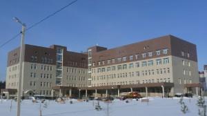 Перинатальный центр г. Тверь (Подсистема «Волна-2», керамогранит)